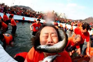 جشنواره شکار ماهی در رودخانه یخی